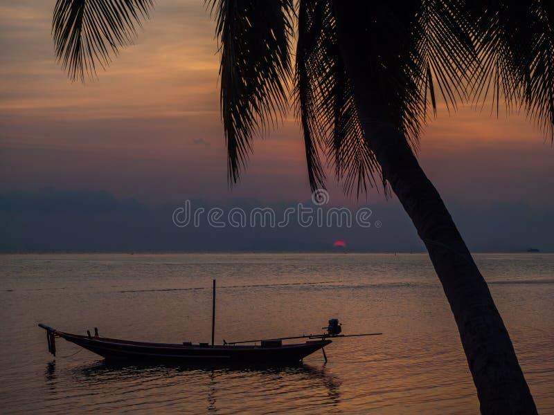 Силуэт шлюпки и пальм против заходящего солнца с облаками стоковое изображение rf
