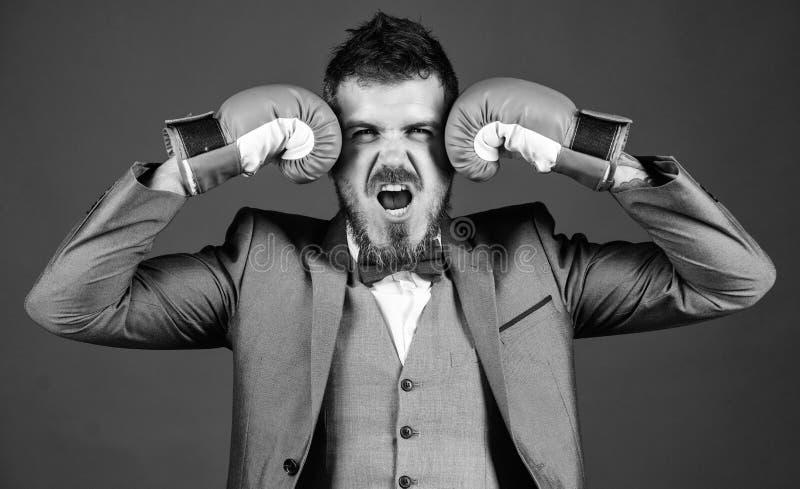 Сильный боксер человека готовый для корпоративного сражения бизнесмен в официальных костюме и бабочке бородатый человек в перчатк стоковая фотография rf