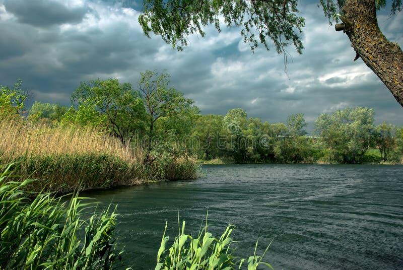 сильный ветер реки стоковые фотографии rf