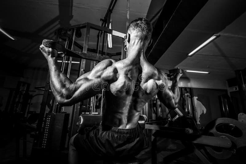 Сильный культурист делая тяжеловесную тренировку для задней части стоковая фотография