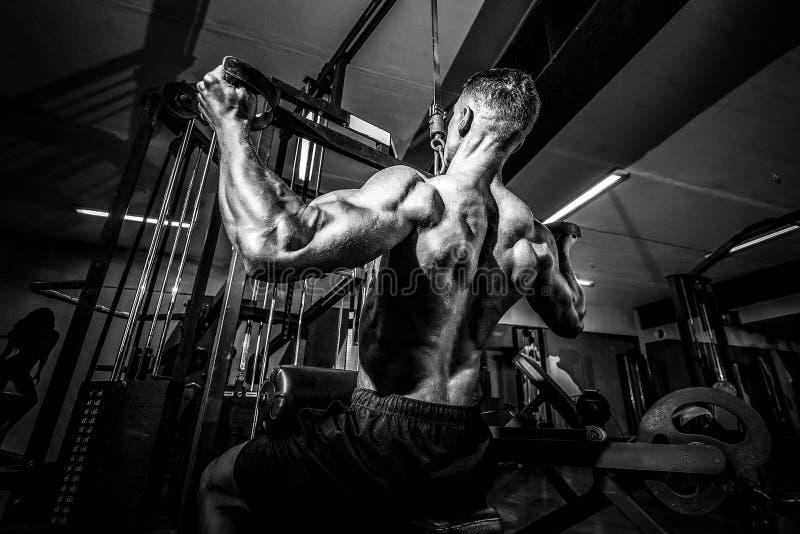 Сильный культурист делая тяжеловесную тренировку для задней части стоковая фотография rf