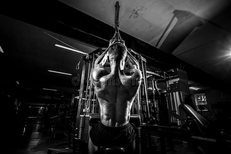 Сильный культурист делая тяжеловесную тренировку для задней части стоковое изображение