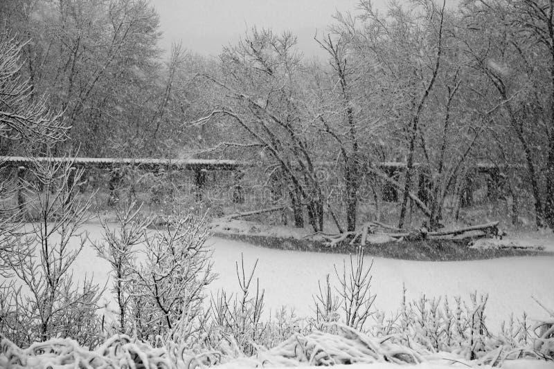Сильный снегопад blankets midwest стоковое фото