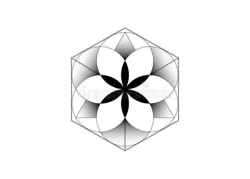 Символ алхимии эзотерический, цветок жизни Священная геометрия, графический иллюстрация элемента вектор изолированная Мистический бесплатная иллюстрация