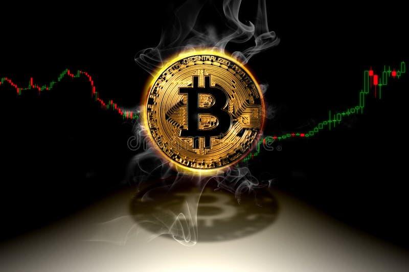 Символ валюты Bitcoin куря с финансовыми данными составляет схему диаграмме, иллюстрации схематического bitcoin торгуя иллюстрация вектора