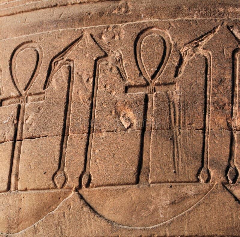 символ иероглифа ankh стоковая фотография