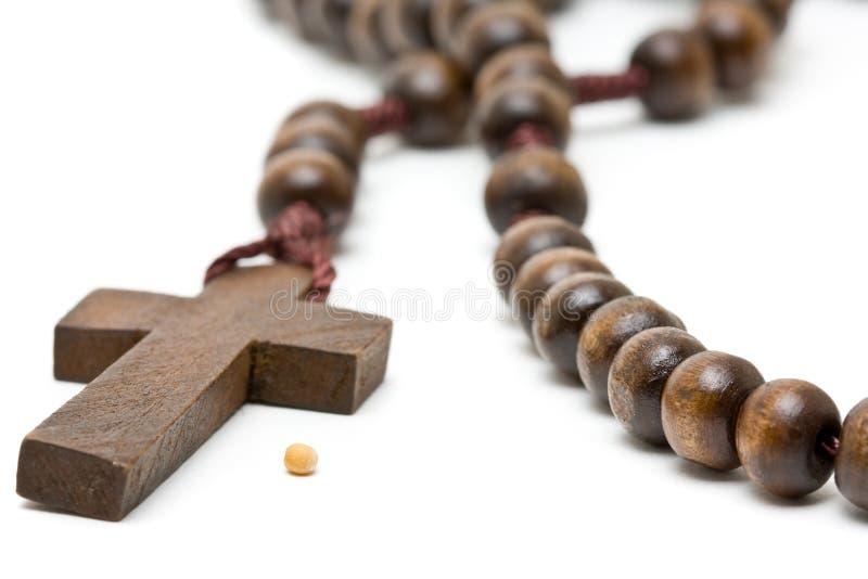 символ семени мустарда веры стоковые фото