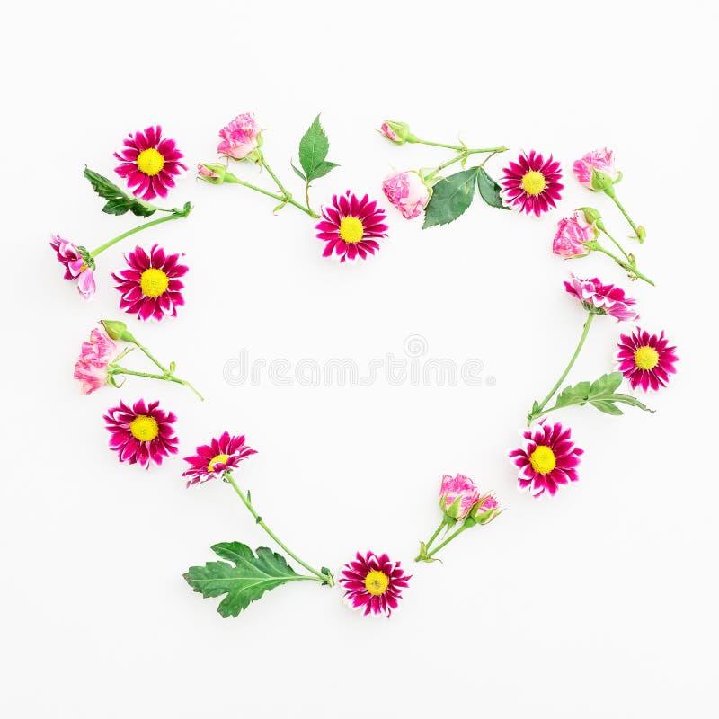 Символ сердца красных цветков хризантемы на белой предпосылке Плоское положение, взгляд сверху вектор детального чертежа предпосы стоковое изображение