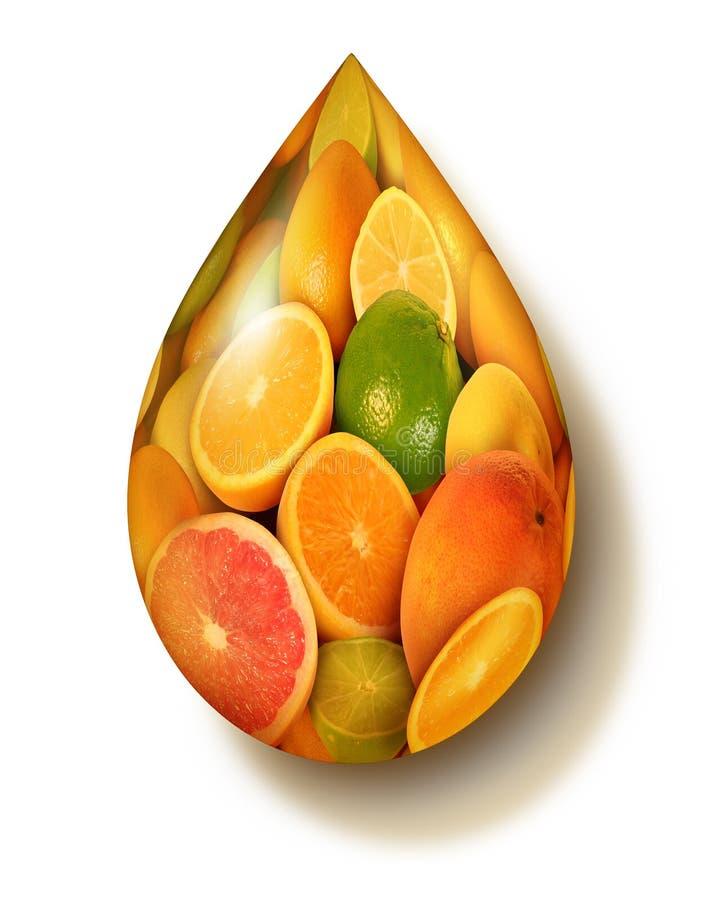 Символ цитрусовых фруктов иллюстрация вектора