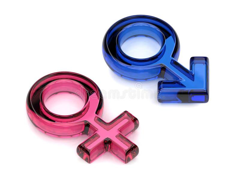 Символы мужского и женского секса Прозрачные самоцветы 3d представляют иллюстрация вектора