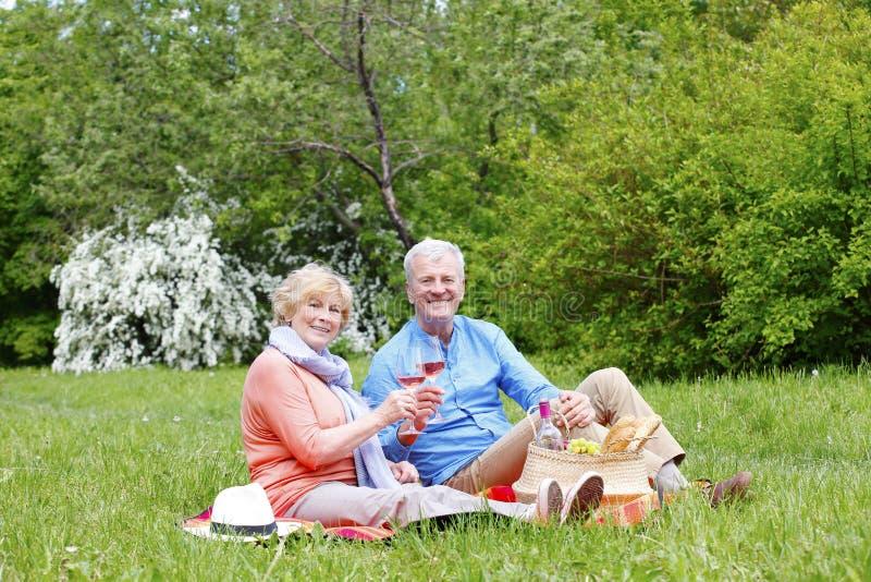 Симпатичные старшие пары ослабляя outdoors стоковое изображение rf