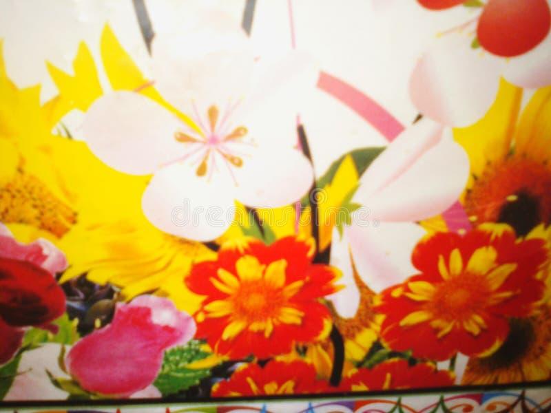 Симпатичные цветки естественные стоковое фото rf
