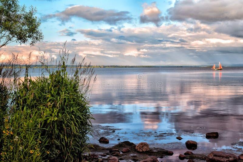 Симпатичный летний день озером стоковая фотография rf