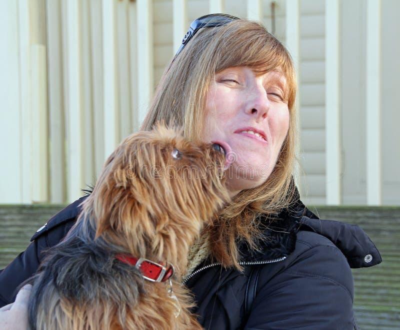 Симпатичный doggy лижет стоковые фотографии rf