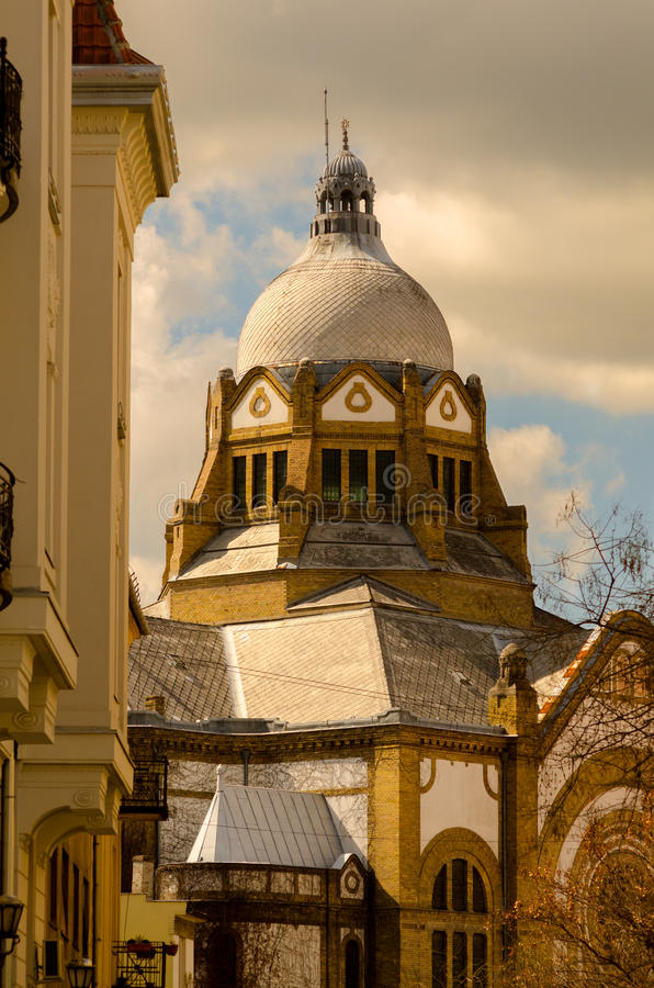 Синагога в центре Novi унылом стоковые изображения