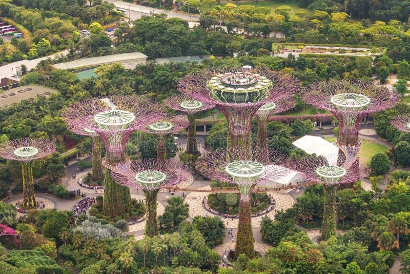 Сингапур - 7-ое июля 2018: Вид с воздуха ботанического сада, сады заливом в Сингапуре стоковое изображение
