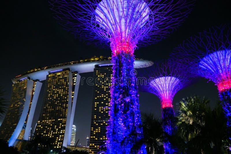 Сингапур - 9-ое марта 2019: гостиница и supertrees песка залива Марины загоренные для светлого шоу в садах заливом стоковая фотография