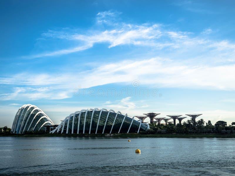 СИНГАПУР - 24-ОЕ НОЯБРЯ 2018: Купол и Supertrees цветка на садах заливом Похожие на дерев структуры приспособлены с экологическим стоковые фото