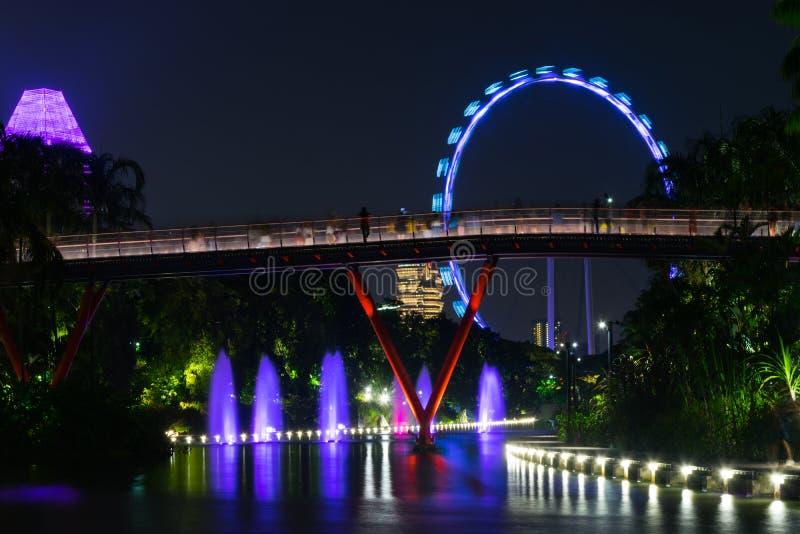 Сингапур - 13-ое октября 2018 Взгляд ночи садов заливом и летчиком Сингапура стоковые фотографии rf