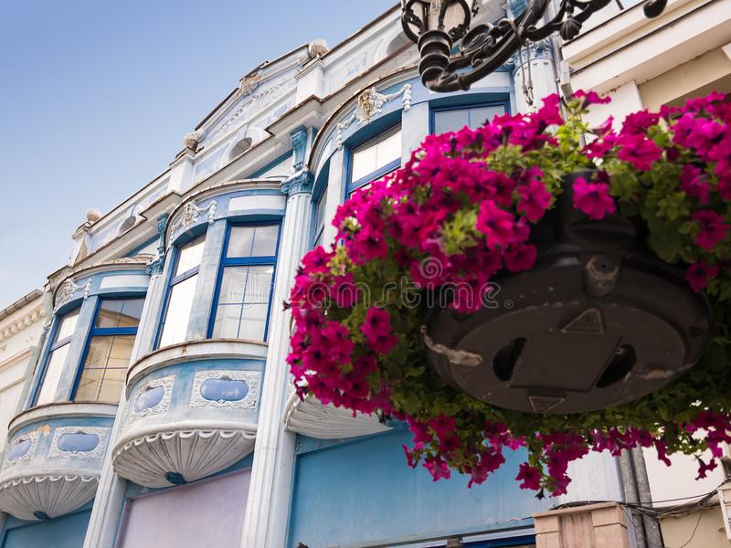 Синие луковые окна и цветы стоковая фотография