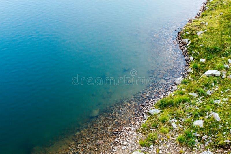 Синий стоковое фото rf