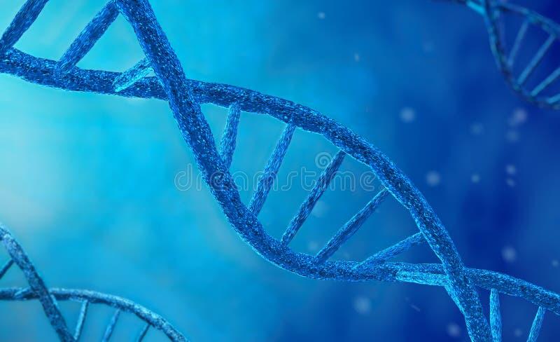 Синтез ДНК, репликации, изменения и процесса перегласовки Концепция предварительного прорыва в научной биотехнологии стоковые фотографии rf