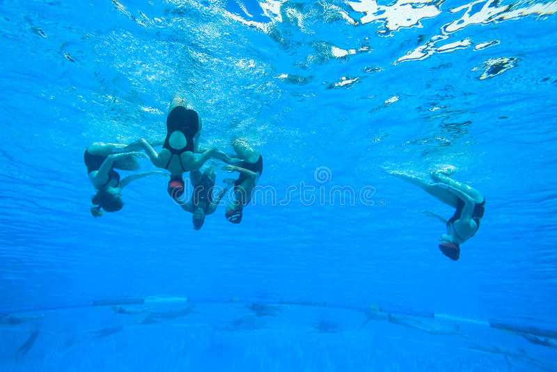Синхронизированные девушки заплывания команды стоковые фотографии rf