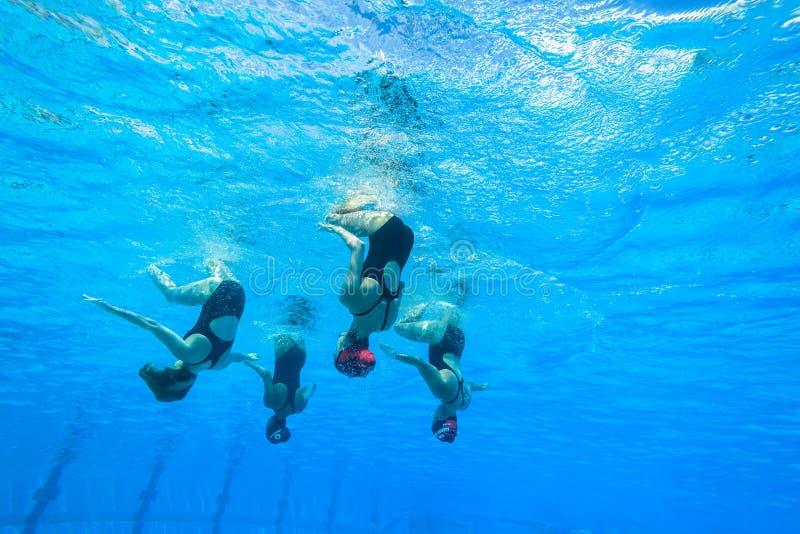 Синхронизированные девушки заплывания команды стоковые изображения
