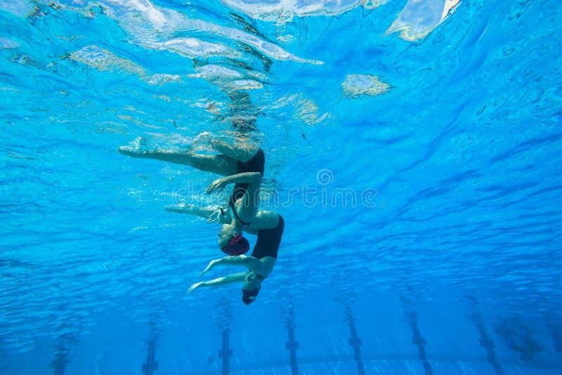 Синхронизированные девушки заплывания команды стоковые изображения rf