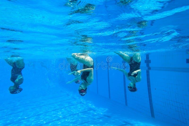 Синхронизированные девушки заплывания команды стоковое фото rf