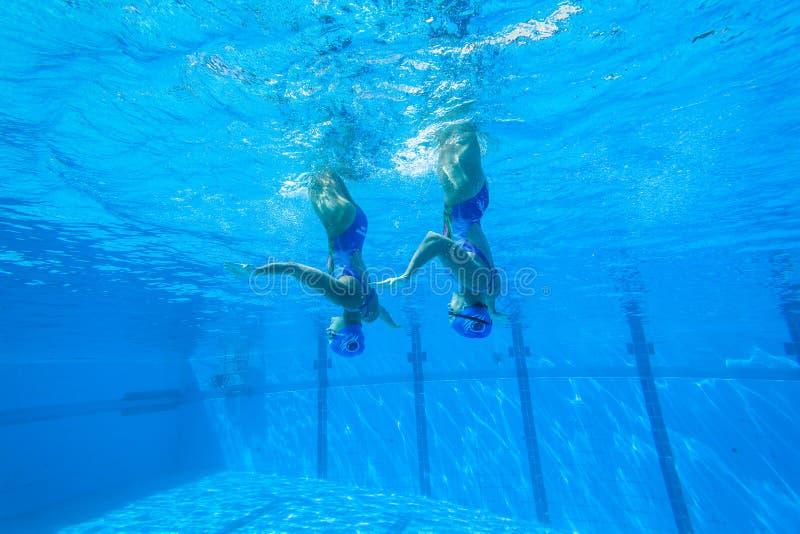 Синхронизированные девушки заплывания команды стоковая фотография