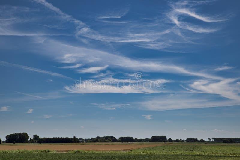синь заволакивает белизна неба стоковое изображение rf
