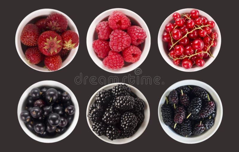 Синь и плодоовощи и ягоды красного цвета изолированные на черноте Сладостная и сочная ягода с космосом экземпляра для текста Взгл стоковая фотография rf