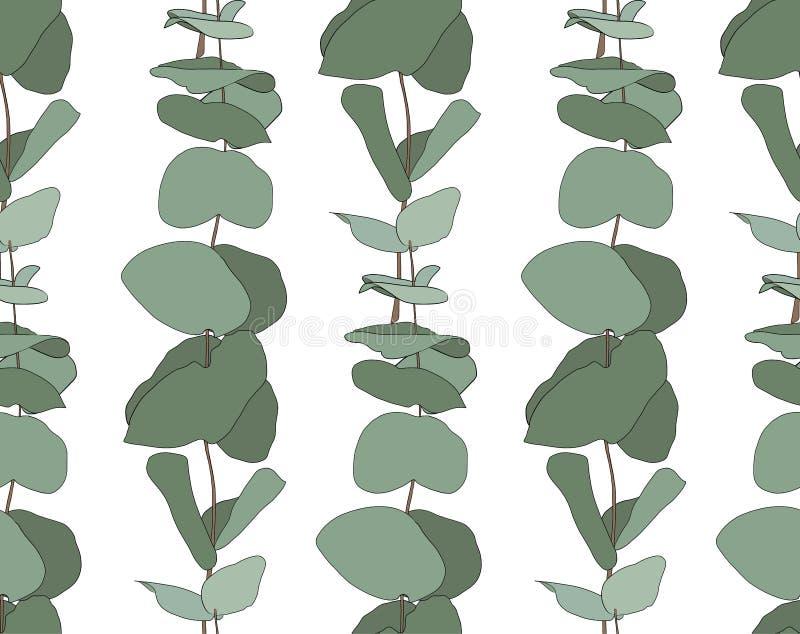Синь младенца евкалипта, ветви листвы естественные с зеленым цветом выходит семенам тропическая безшовная картина иллюстрация штока