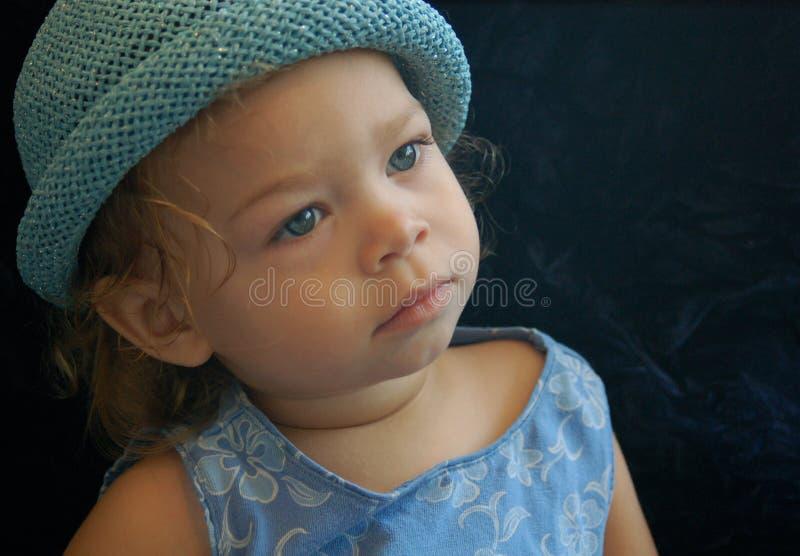 Синь младенца стоковые фотографии rf