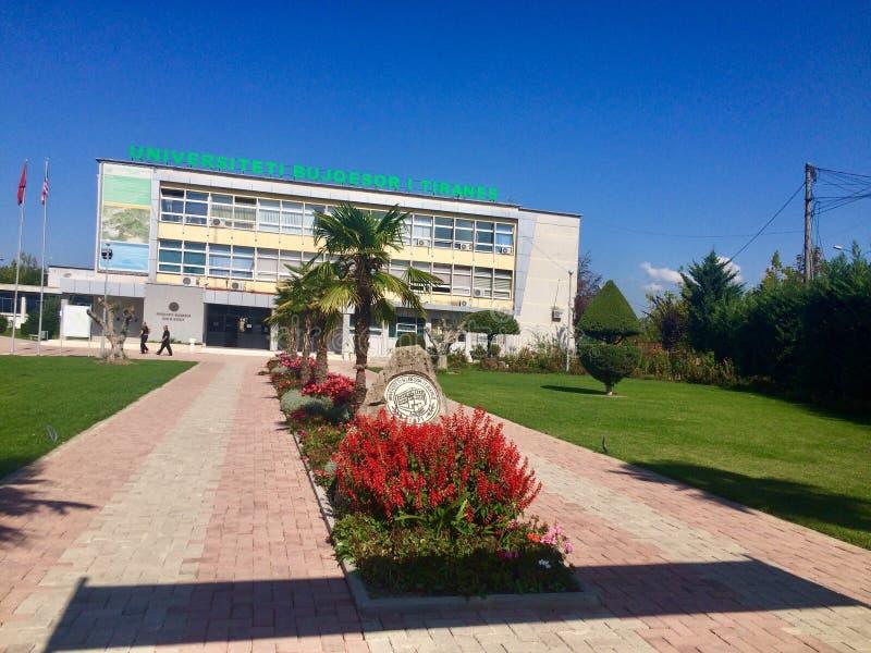 Синь университета стоковые изображения