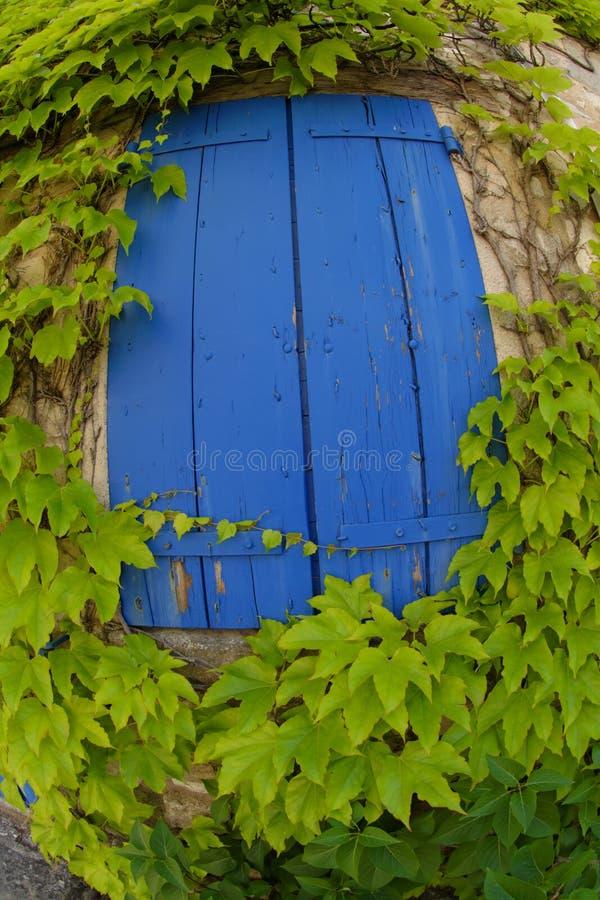 синь shutters окно стоковые фото