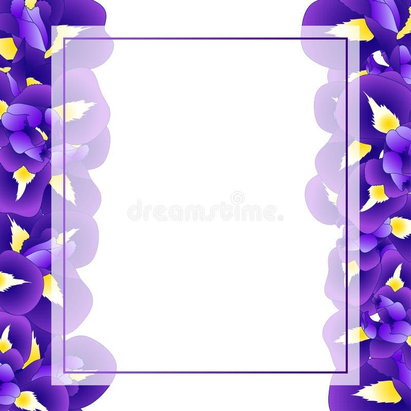 Синяя фиолетовая карточка знамени цветка радужки также вектор иллюстрации притяжки corel иллюстрация вектора