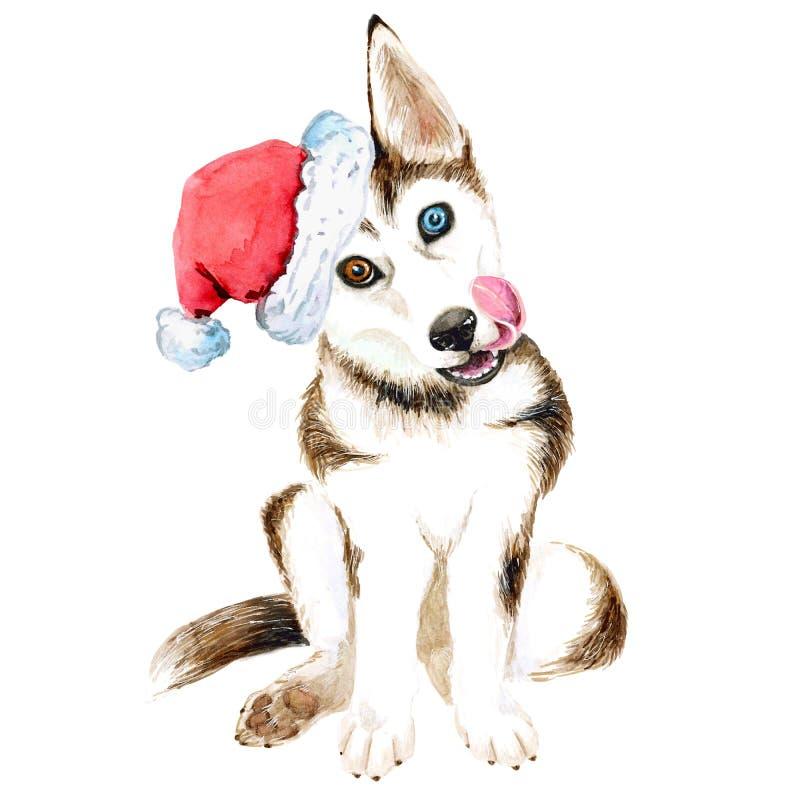 Сиплый щенок сидит в шляпе Санта Клауса Собака Брауна с красивыми изолированными глазами Рождество Новый Год иллюстрация штока