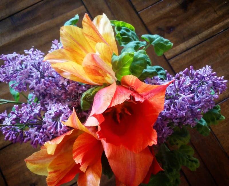 Сирени и тюльпаны стоковое фото rf