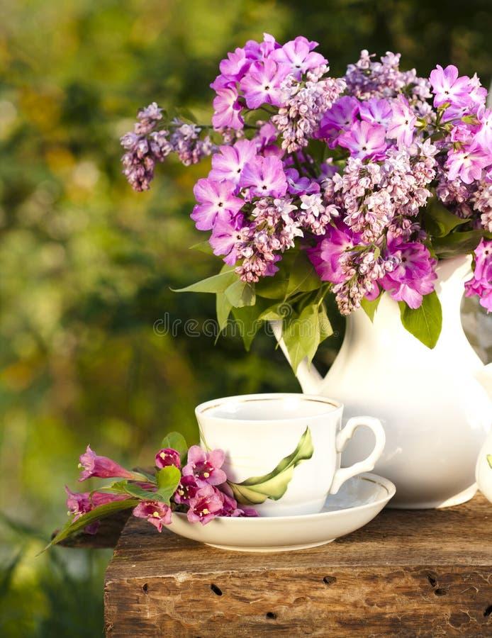 сирень кофейной чашки стоковая фотография rf