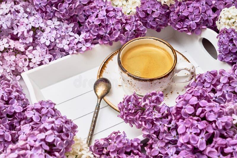 Сирень цветет предпосылка с чашкой кофе в середине с c стоковое изображение