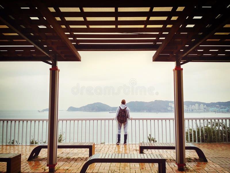 Сиротливая девушка смотря штиль на море стоковое изображение rf