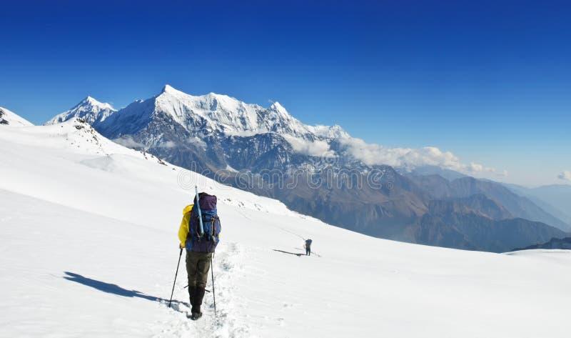 Сиротливые trekkers на большом fieldsin Гималаях снежка стоковая фотография rf