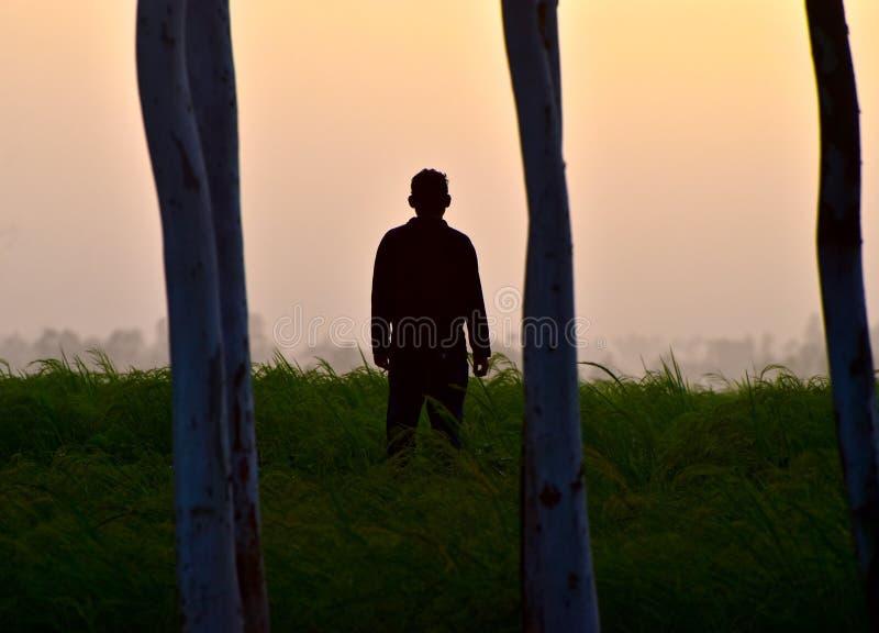 Сиротливый человек стоя вокруг фотоснимка запаса рисовых полей уникально стоковое изображение