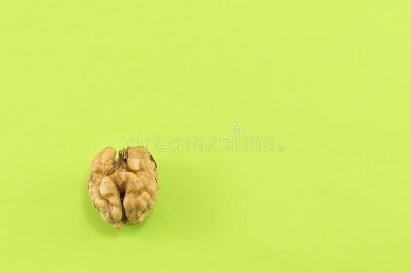 Сиротливый, который слезли грецкий орех на зеленой предпосылке стоковое изображение