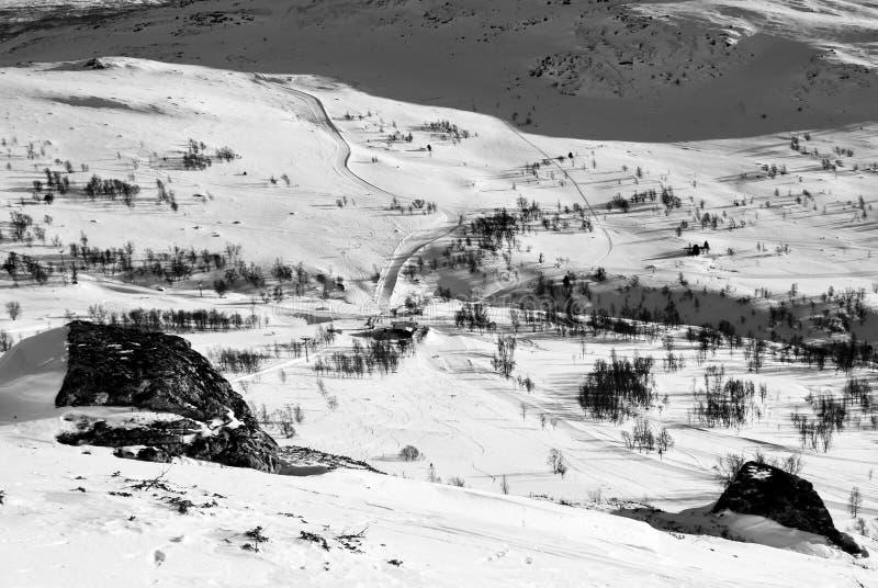 Система лыжи сверху стоковые изображения rf