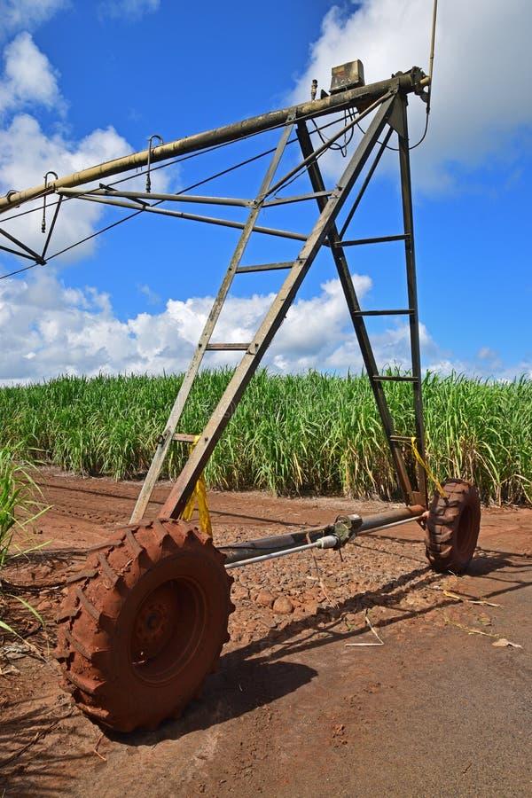 Система технологии полива используемая в поле плантации сахарного тростника стоковое фото rf