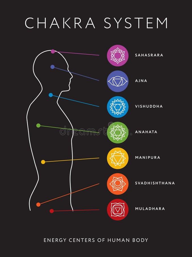 Система Chakra человеческого тела Центры энергии бесплатная иллюстрация
