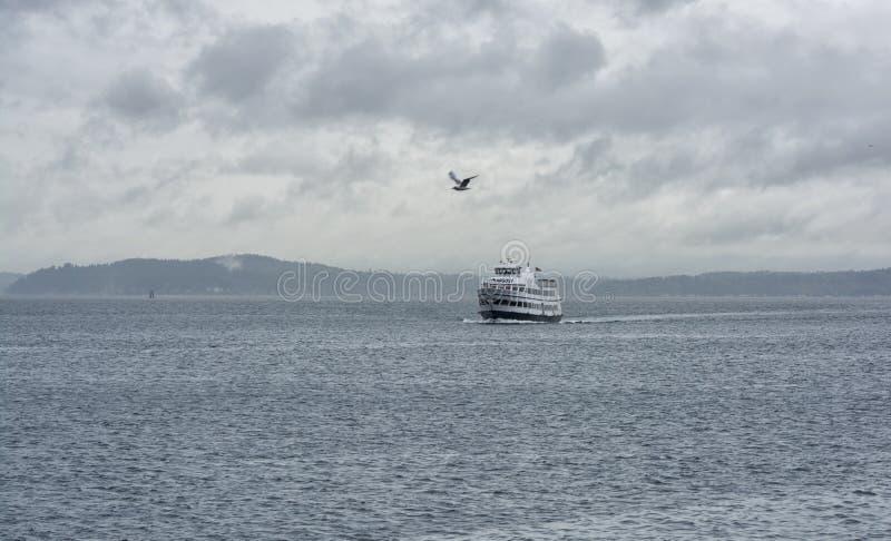 Сиэтл - шлюпка и птица стоковое изображение rf